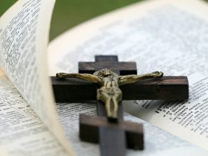 books of the bible in order
